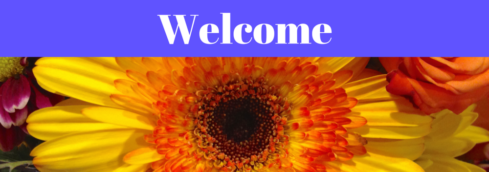 resize50-blue3-Welcome banner.png