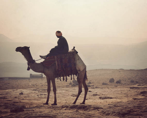 camelrider_web.jpg