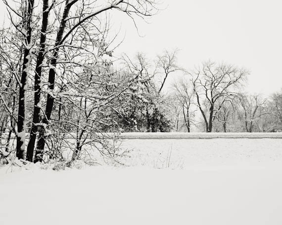 snow1 web.jpg