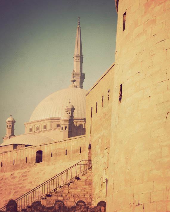 citadel_web.jpg