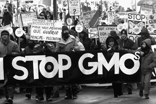 Say-No-To-GMO.jpeg