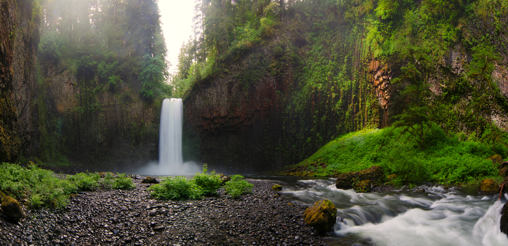 The beautiful Abiqua Falls showing off a great water flow this time of year.