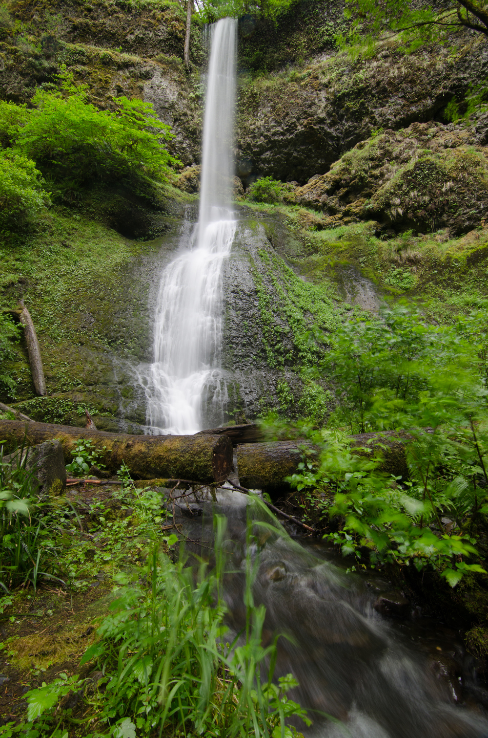 A waterfall at Silver Falls state park.
