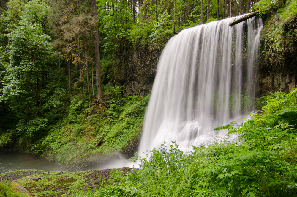 A more traditional view of one of the waterfalls at Silver Falls state park.