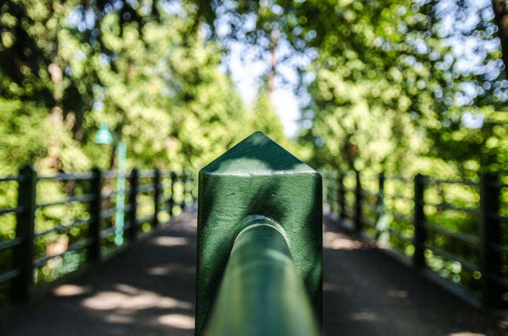 Stanley Park-4.jpg
