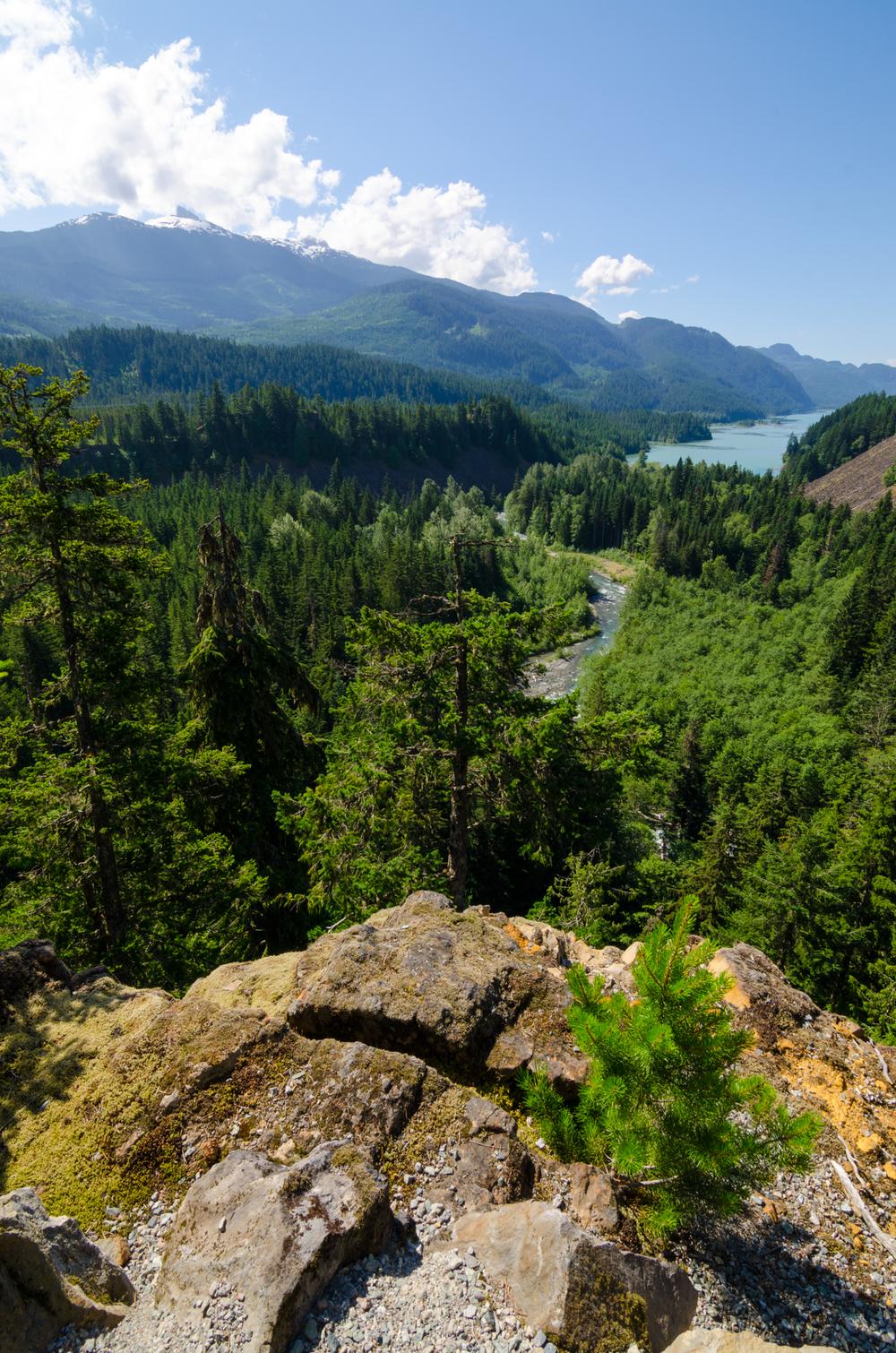 Whistler Waterfalls-2.jpg