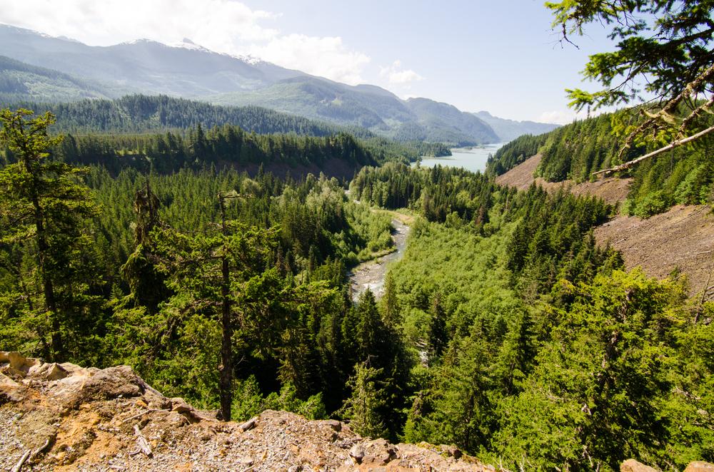Whistler Waterfalls-3.jpg
