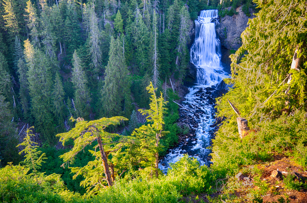 Whistler Waterfalls-5.jpg