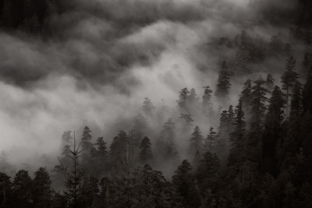 Southern Oregon-9.jpg