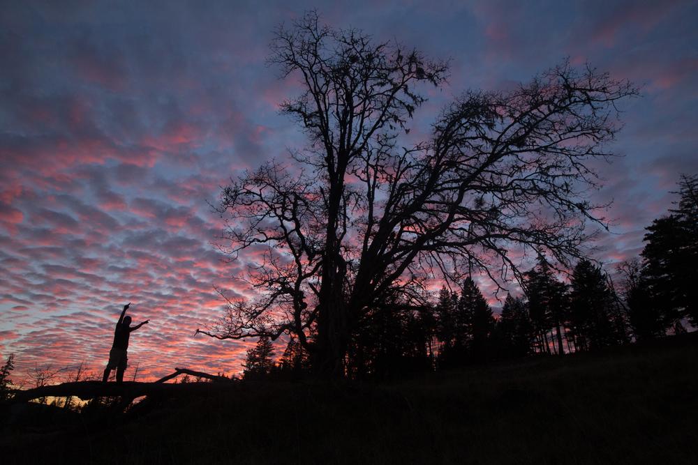 Southern Oregon-23.jpg