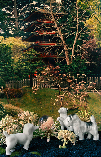 Japanese Tea Garden, 2011 12.5 x 19 inches Archival Pigment Print Edition 1 of 10