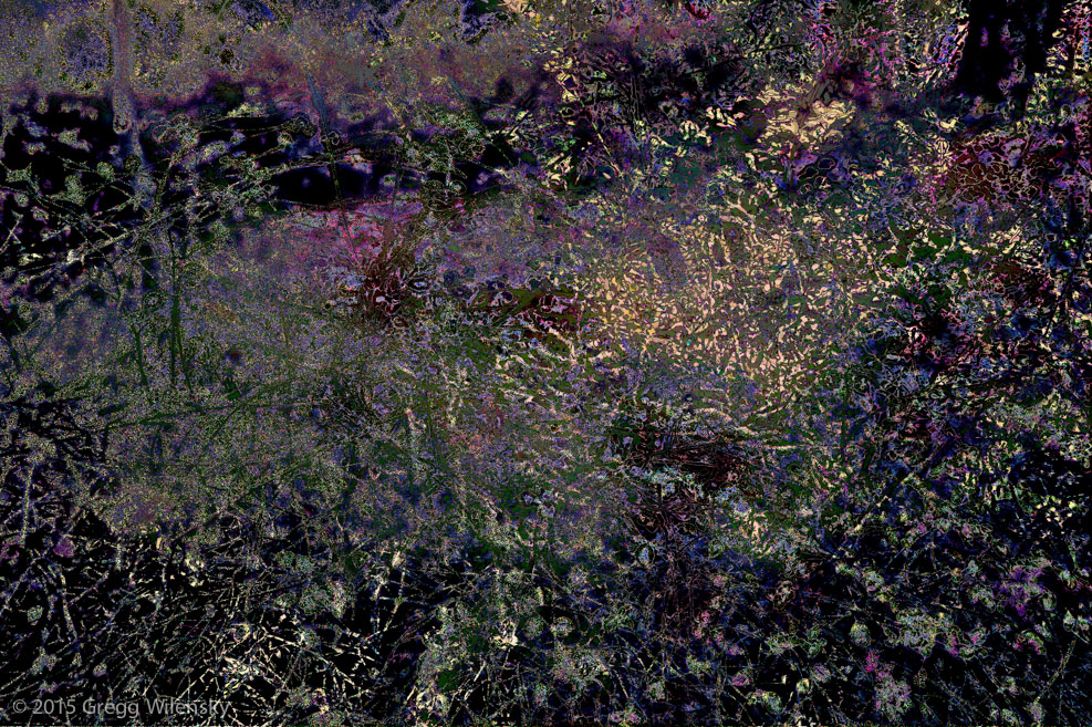 Gregg Wilensky   Remnants of purple, Grand lac , 2015 28 x 42 inches, edition of 10 Pigment print on cotton paper