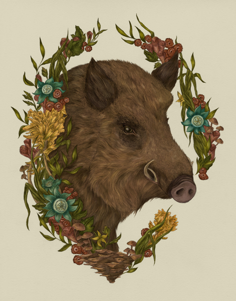 """THE WILD BOAR"" BY JESSICA ROUX"