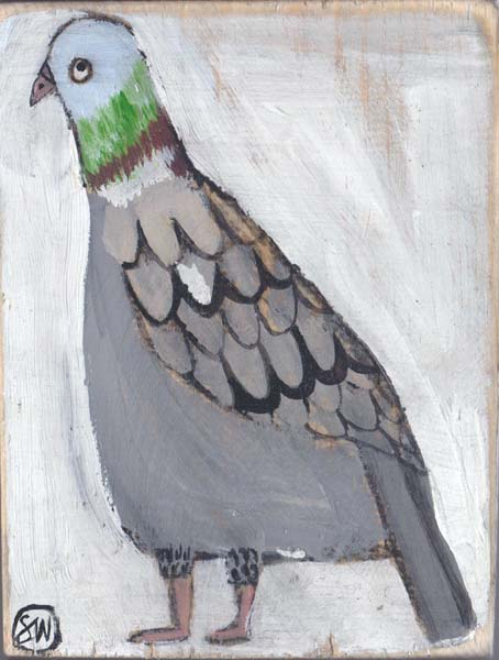 """Pigeon"" by Sally Welchman"