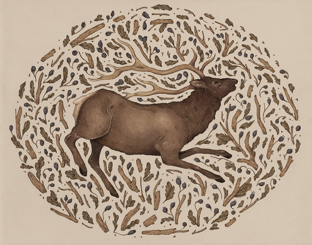 """Elk in Nature"" by Jessica Roux"