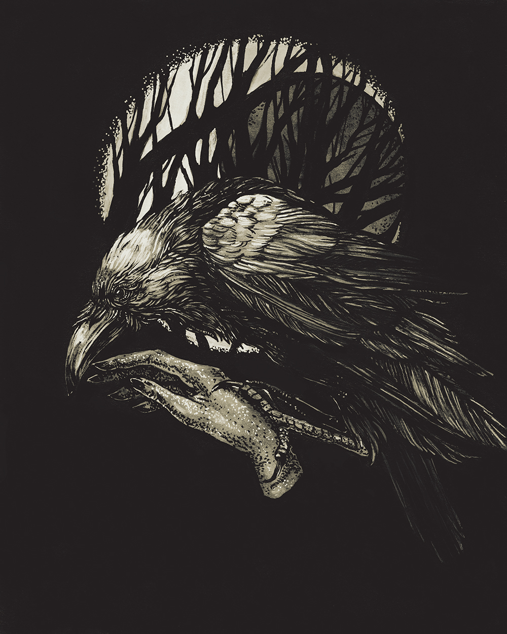"""Raven"" by Rebecca Olene"