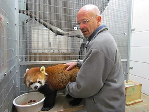 Dr. Michael Petersen and a red panda.