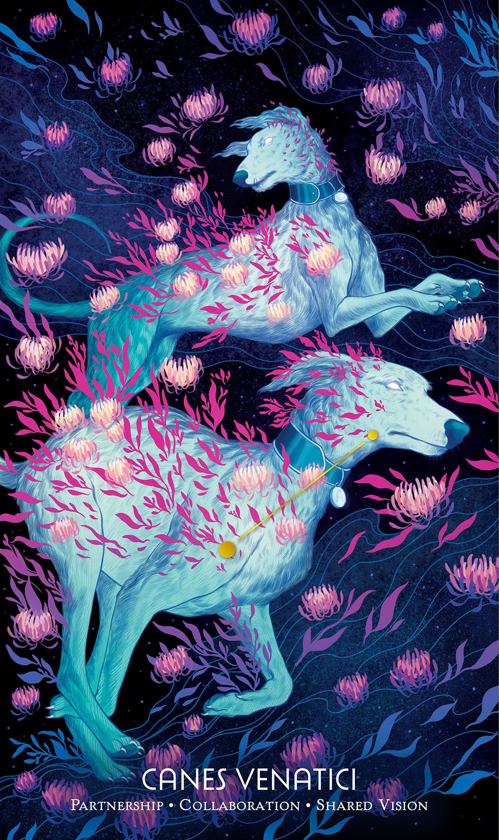 """""""Canes Venatici"""" by Jen Bartel"""