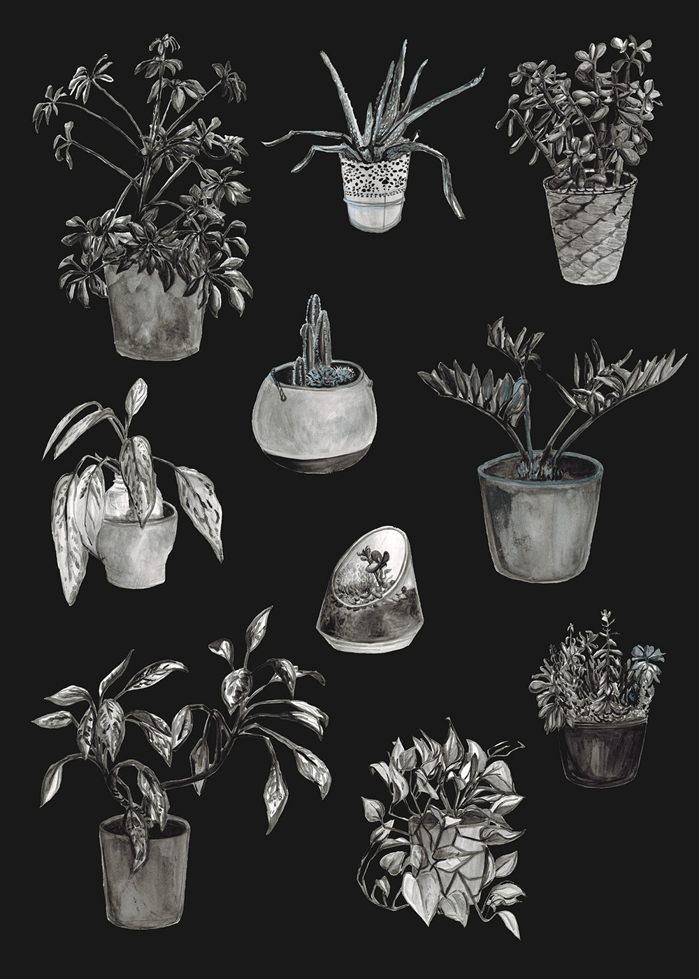 """House Plants"" by Jenny Bookler"