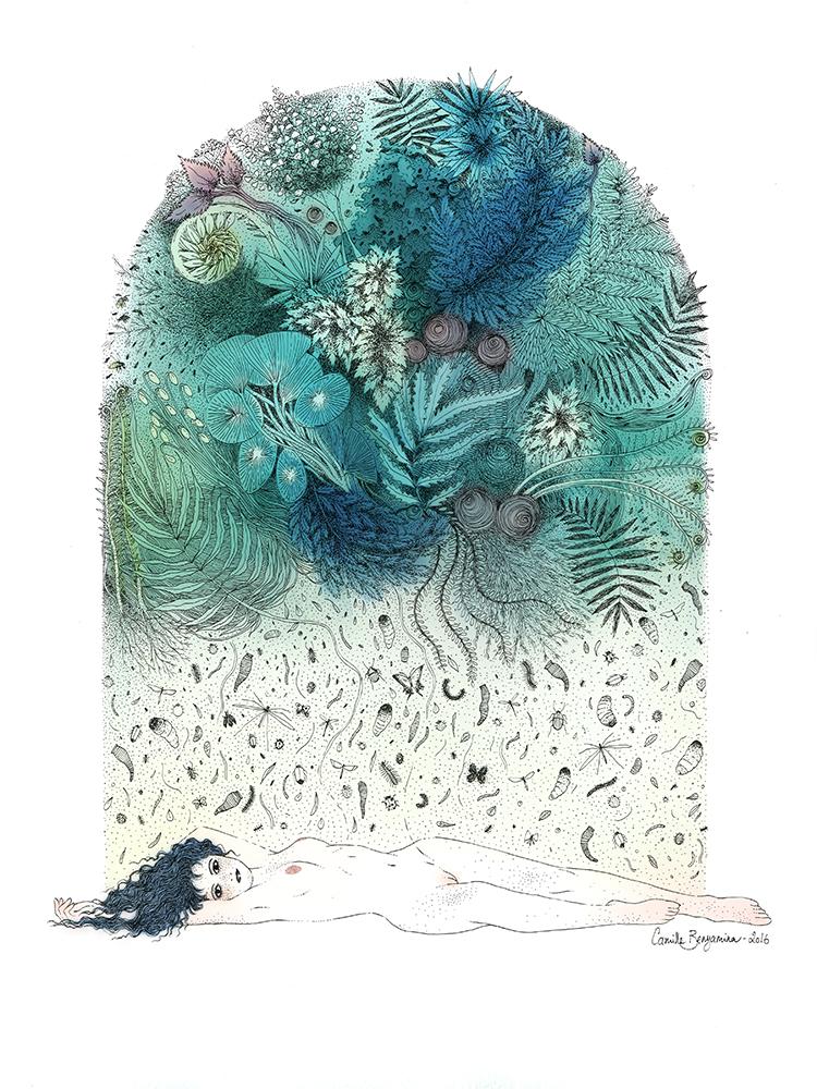"""""""Une histoire de fougère"""" by Camille Benyamina"""