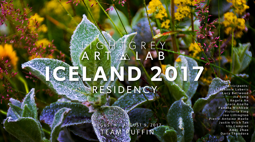 Iceland-2017-Team-Puffin-Button.jpg