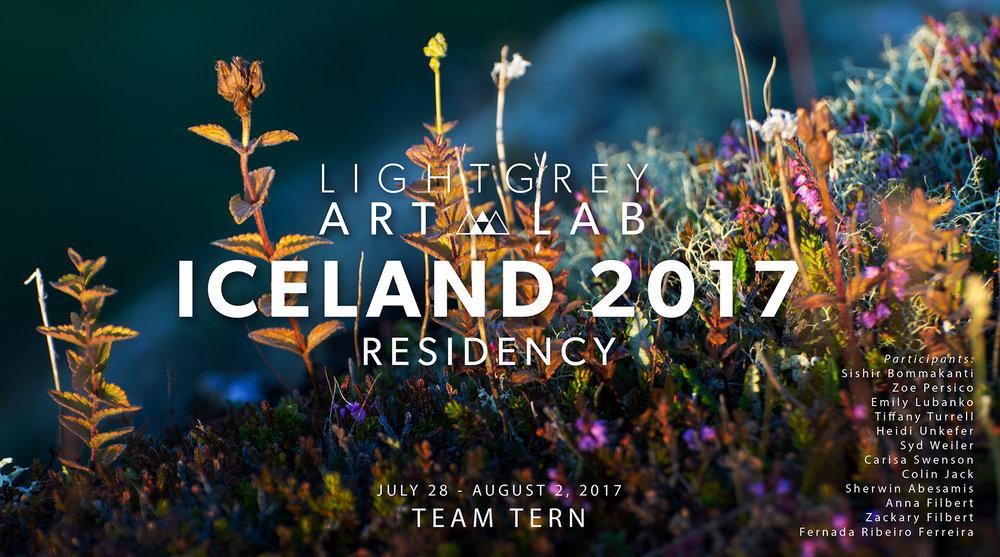 Iceland-2017-Team-Tern-1000.jpg