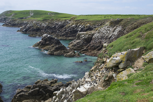 A view of the beautiful coast of the Saltee Islands where whitecap waves hide the thousands of shipwrecks broken upon the rocky shore.