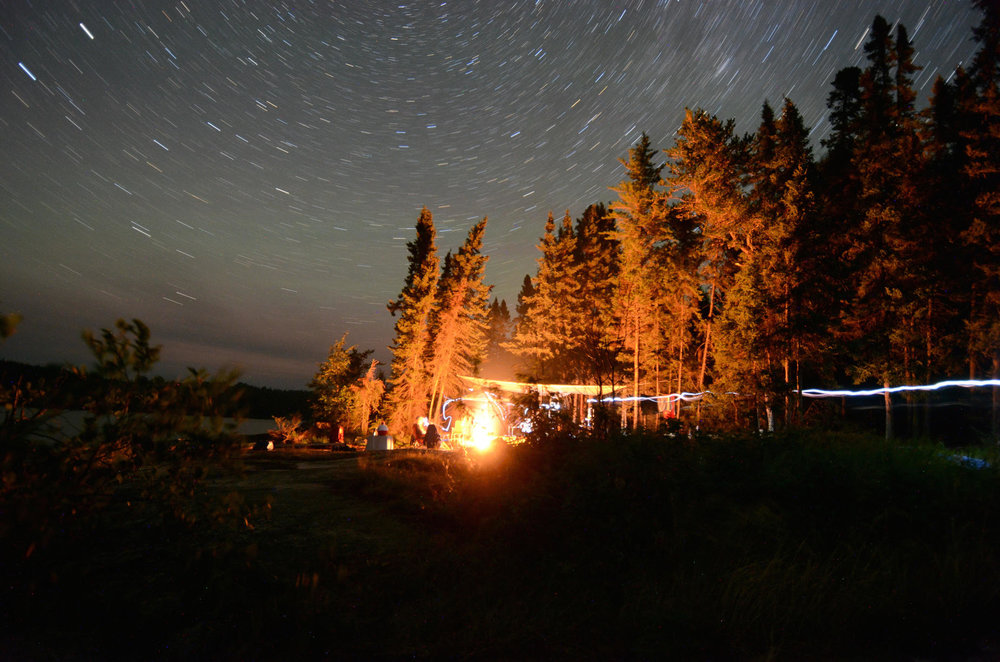 Learn to forage for natural ingredients to add to our big bonfire cook-out under the stars.