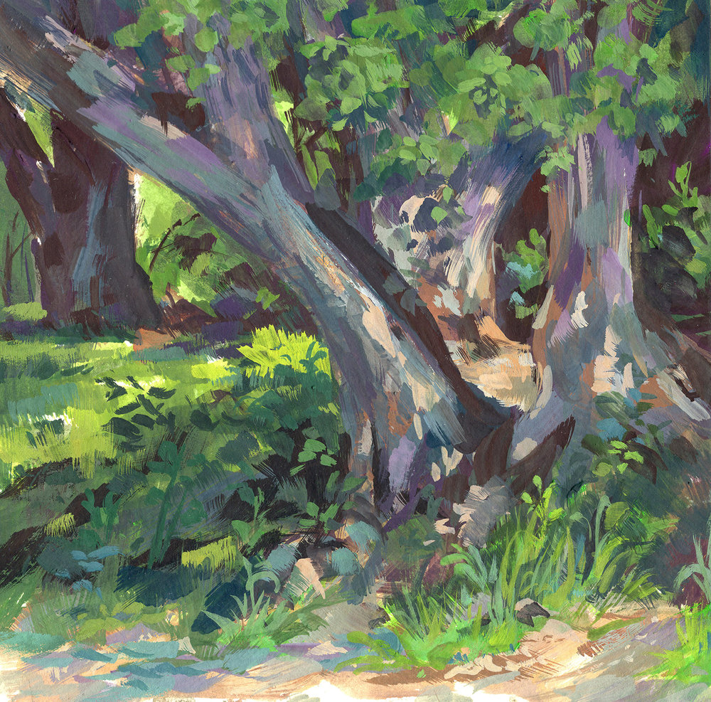 Arroyo Forest_6x6.jpg