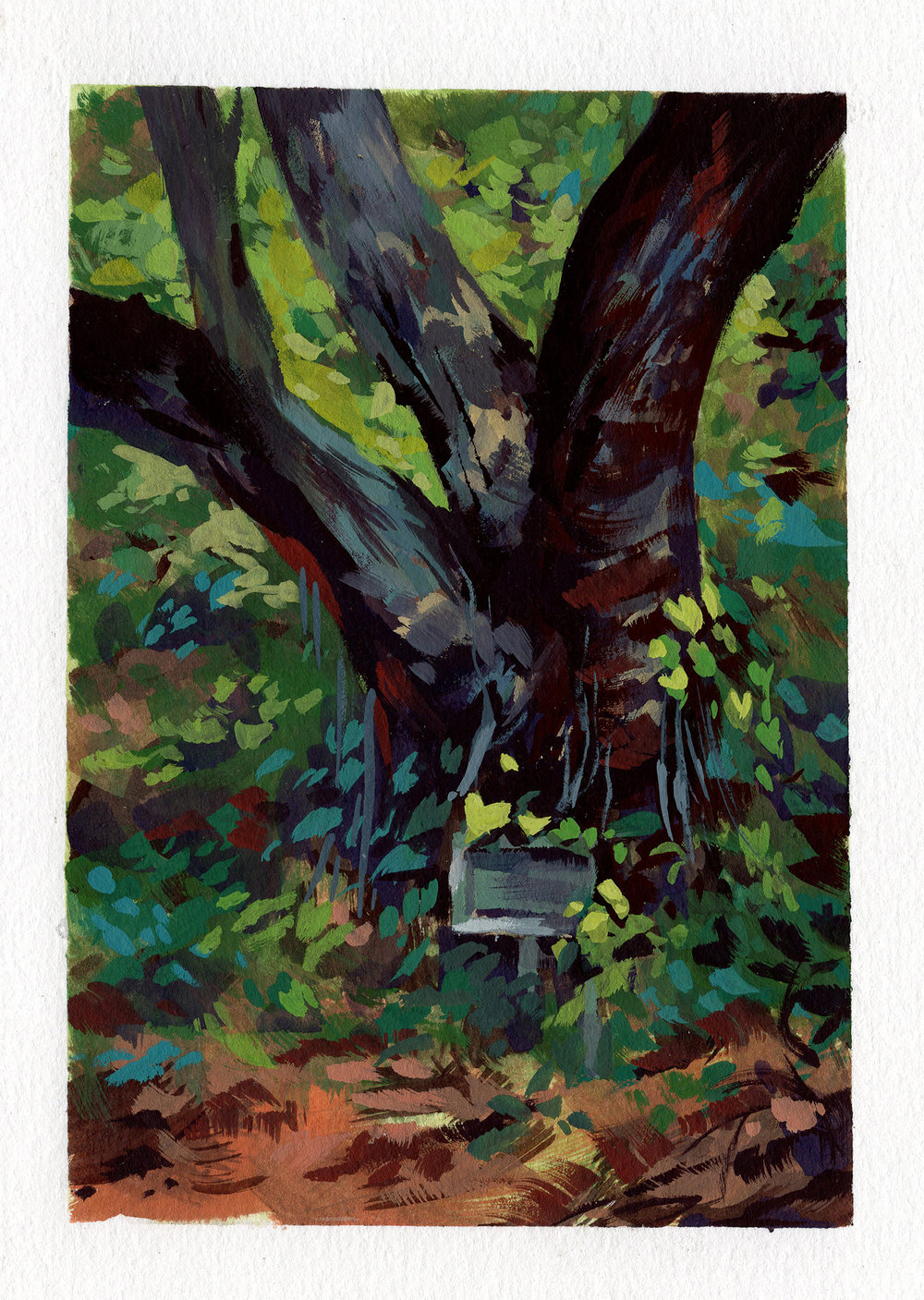 Arroyo Seco Tree_3.5x5.jpg