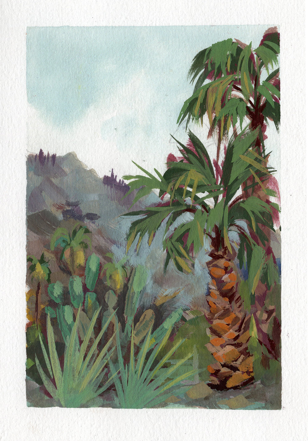 Palm Springs Trees_3x5.jpg