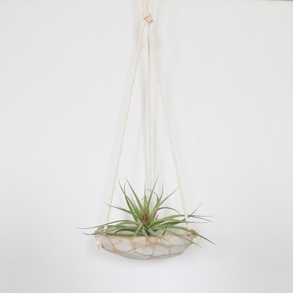 """""""Geode Hanging Dish with Plant"""" – Janelle Gramling"""