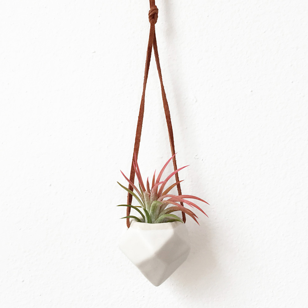 """Small Hanging Air Plant Vase"" – Janelle Gramling"