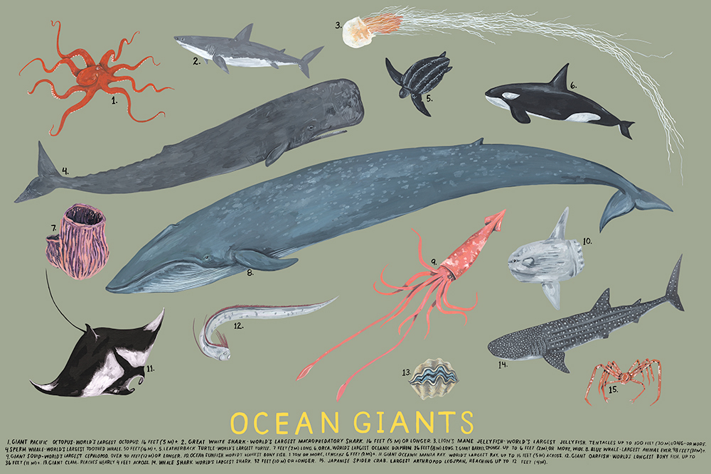 ocean-giants-full-scan.jpg