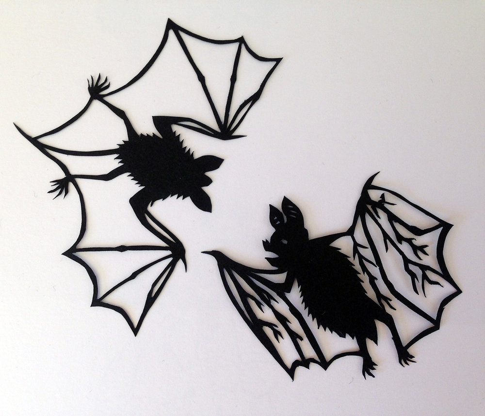"""""""BATS! I"""""""
