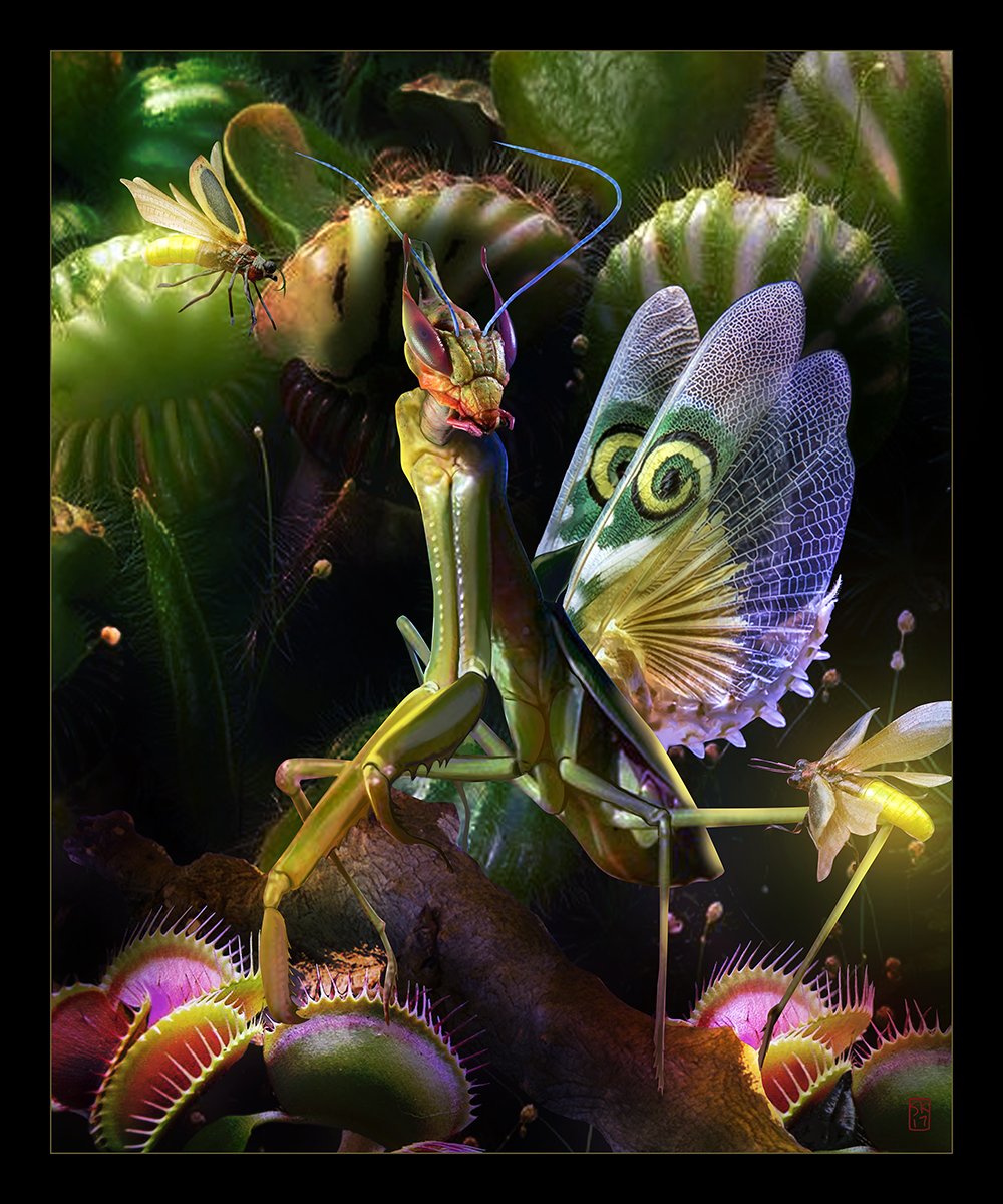 """Among the Flytraps"" by Sheena Klimoski"