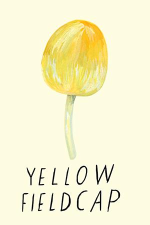 yellow fieldcap.jpg