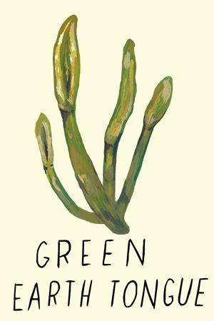 green earth tongue.jpg