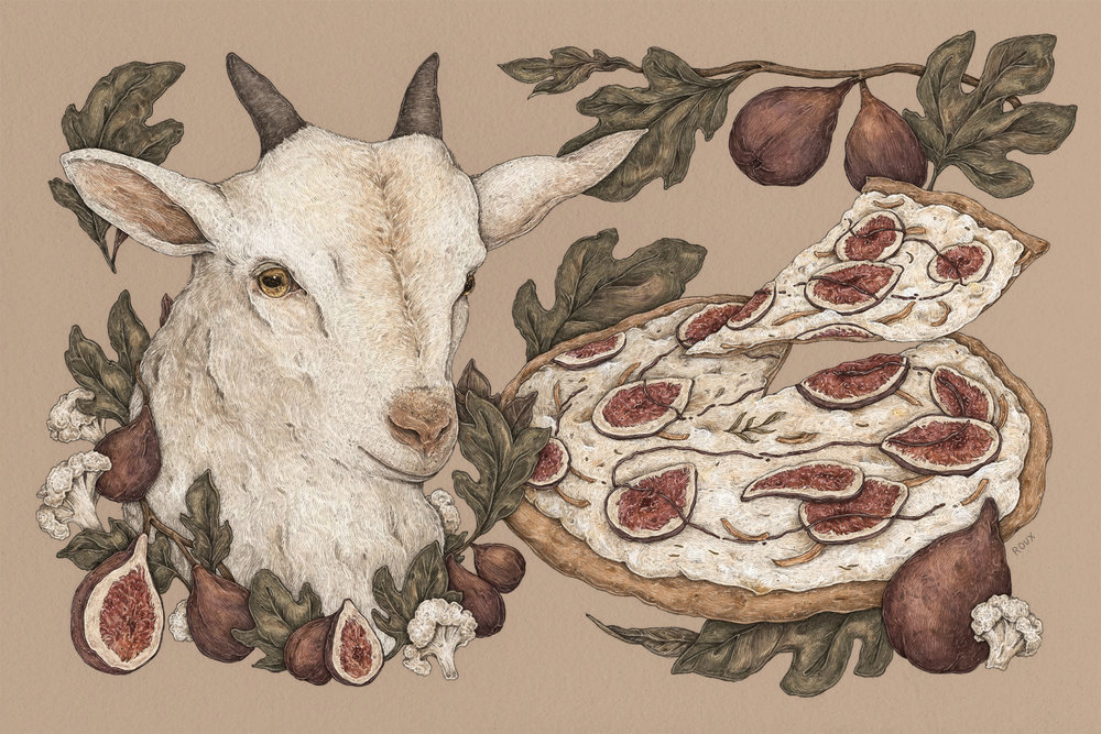 """Fig and Goat Cheese Pizza"""