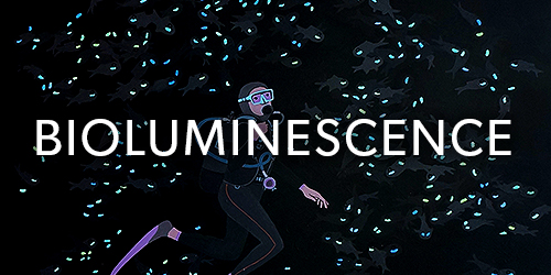 bioluminescence_thumb.jpg
