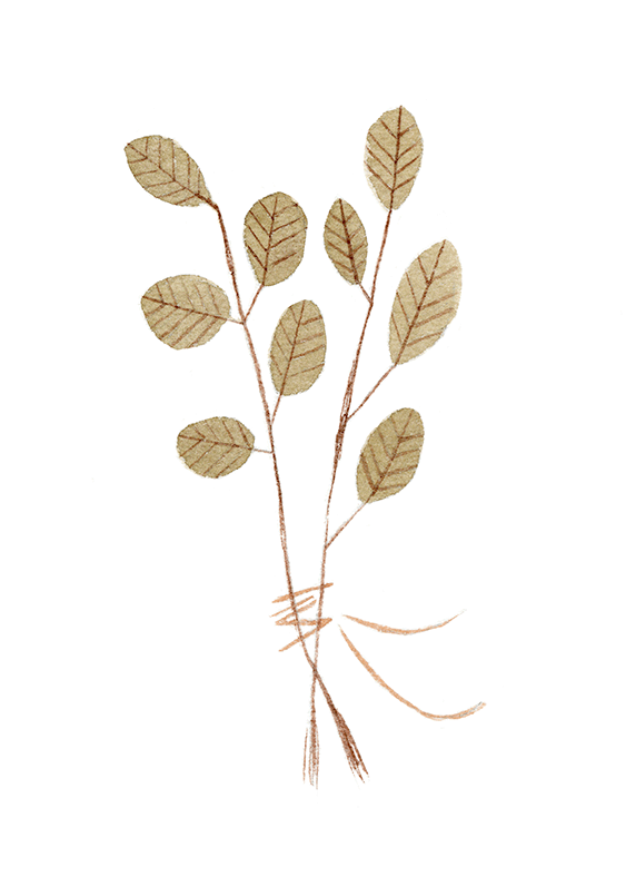 """""""Leaves"""""""