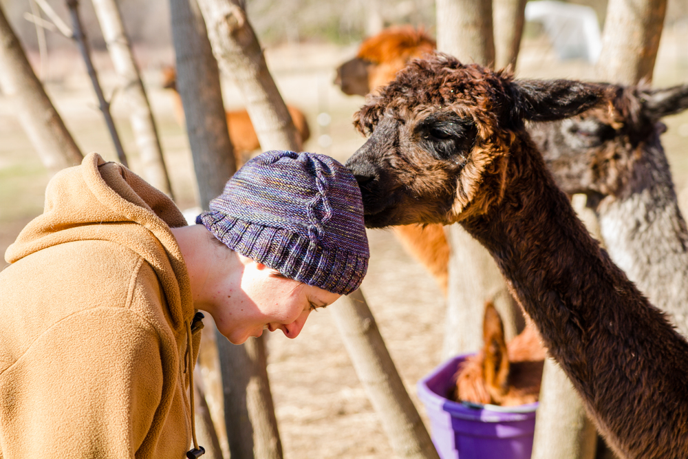 Some of them were quite curious about our headwear. No, these hats are not Alpaca, they are Merino!