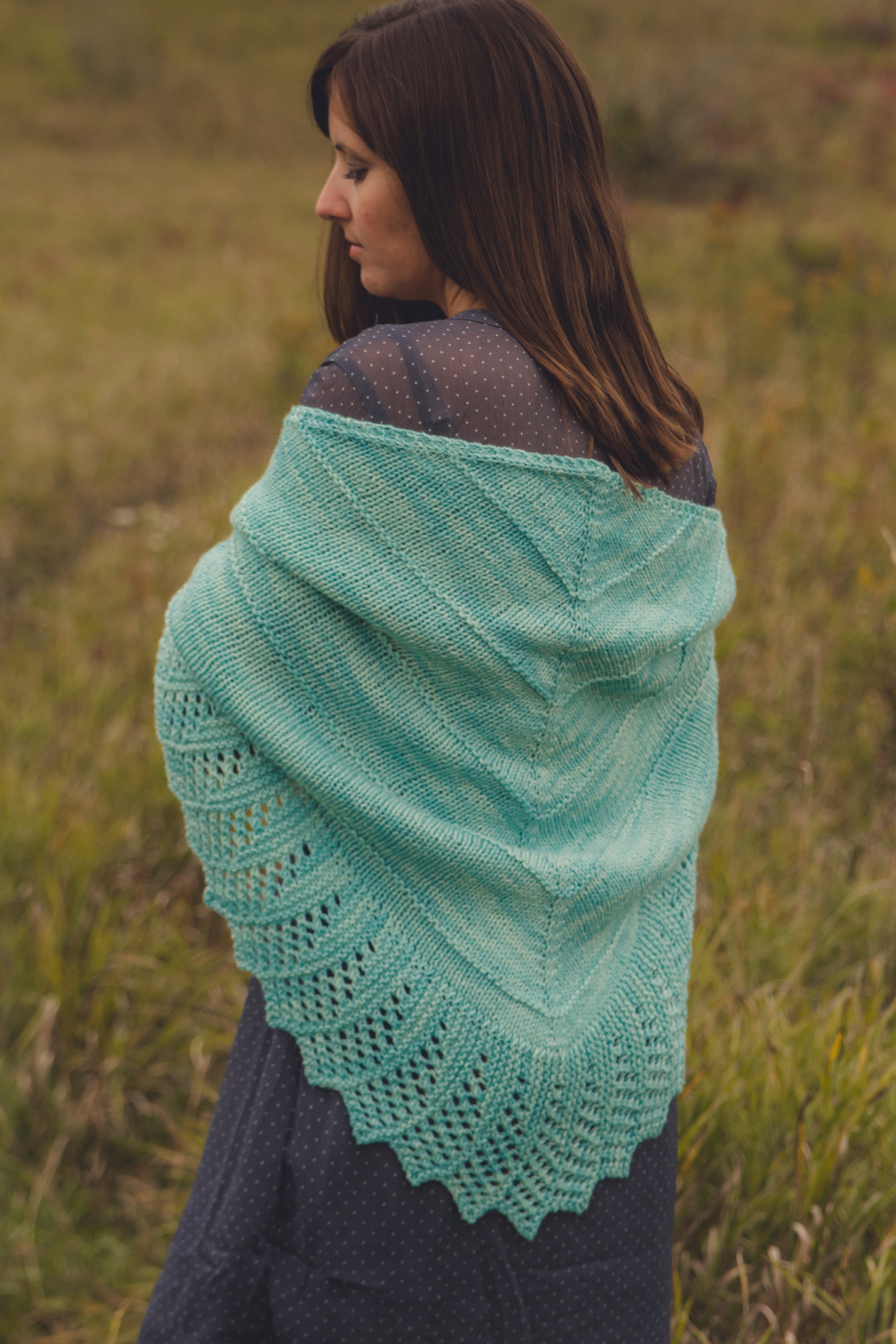 Wide Open Spaces, in Nova Worsted, Glacier Araucana colorway