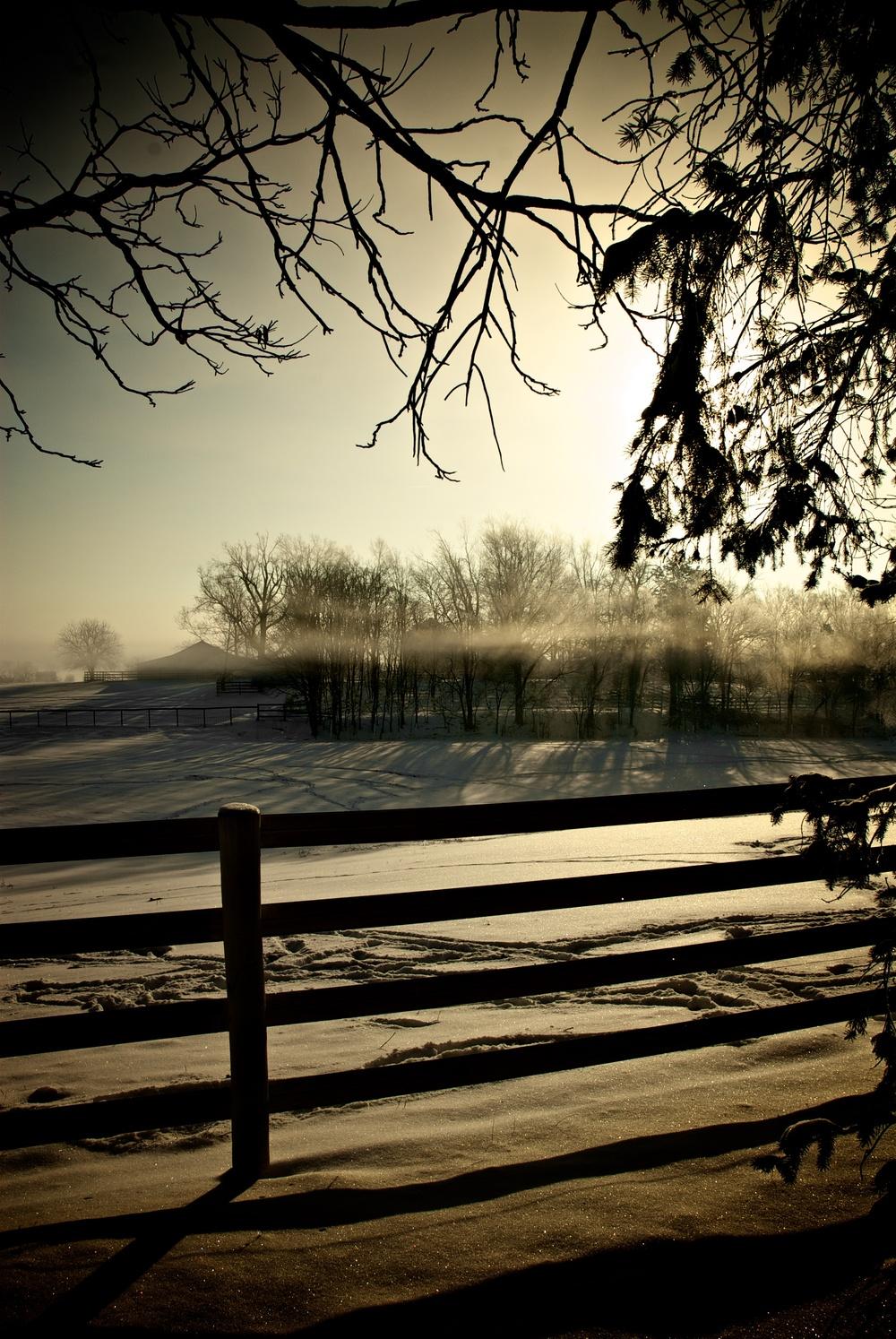 Morning, February 2008