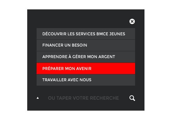 box_recherche_avancee.png