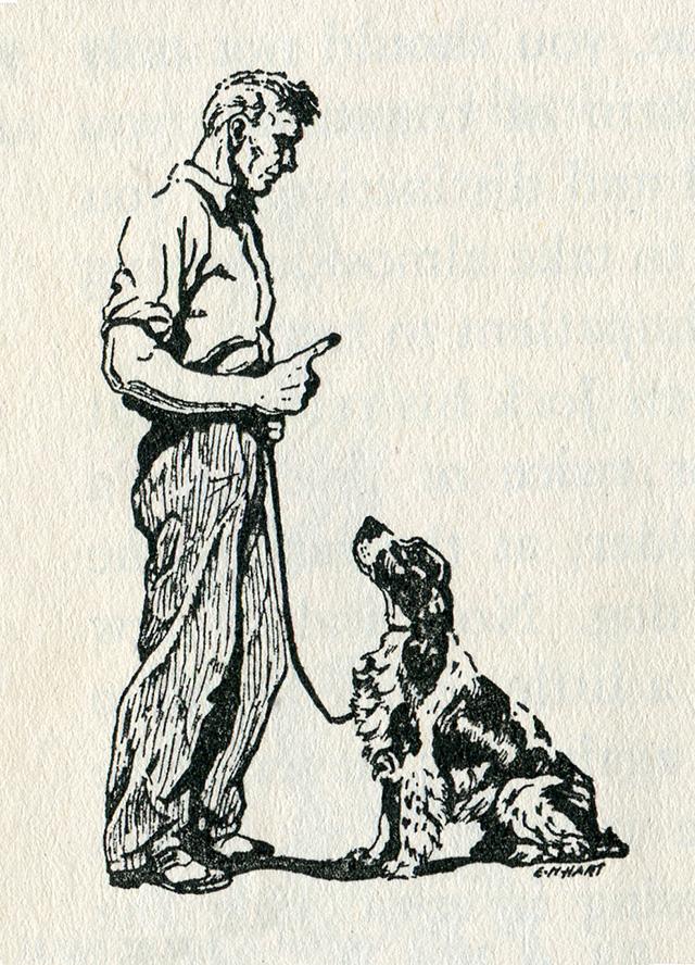obey_dog.jpg