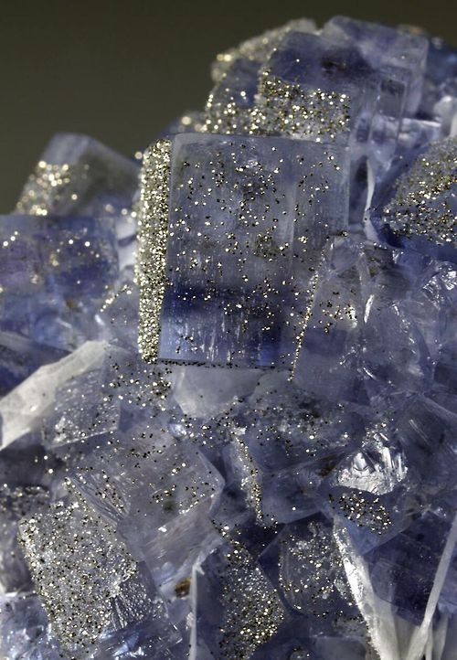 Fluorite with Pyrite