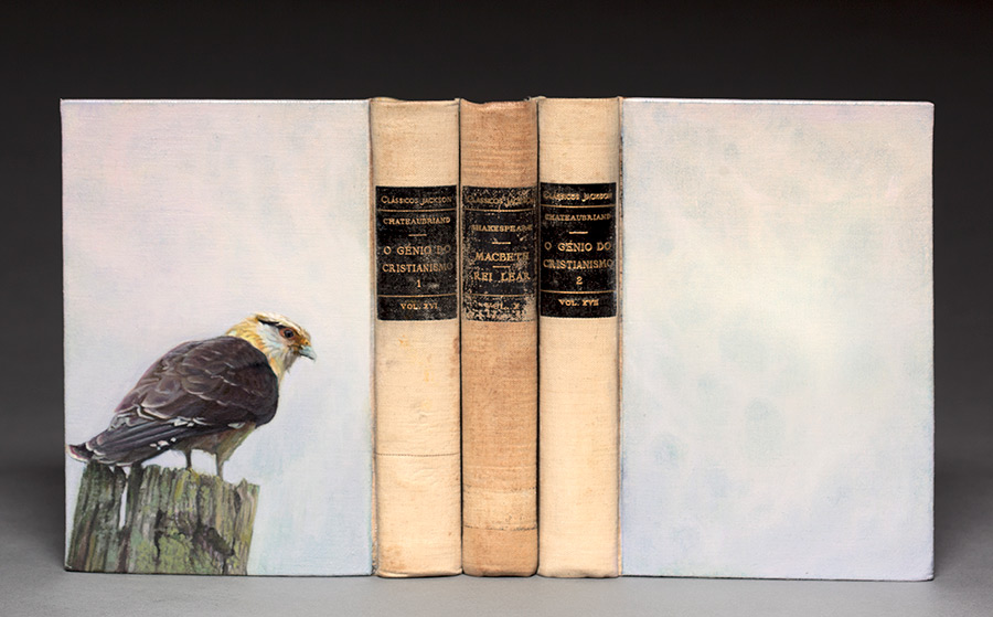 Guy Laramee. Bird portraits painted on second hand books with their native habitats carved into the pages.