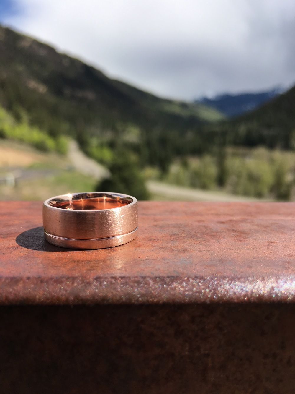 Rose Gold his band