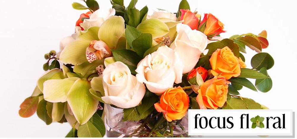 focus floral cover photo2.jpg